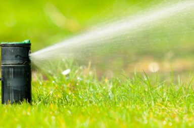 economiser-eau-jardin-entete-article